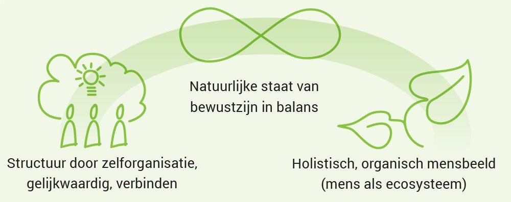 Organisaties in balans